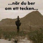 …när du ber om ett tecken…